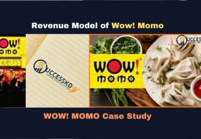 Wow! Momo Revenue (Business) Model | How Wow! Momo Earns Money (Case Study on Wow! Momo)